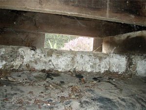Crawl space floor membranes
